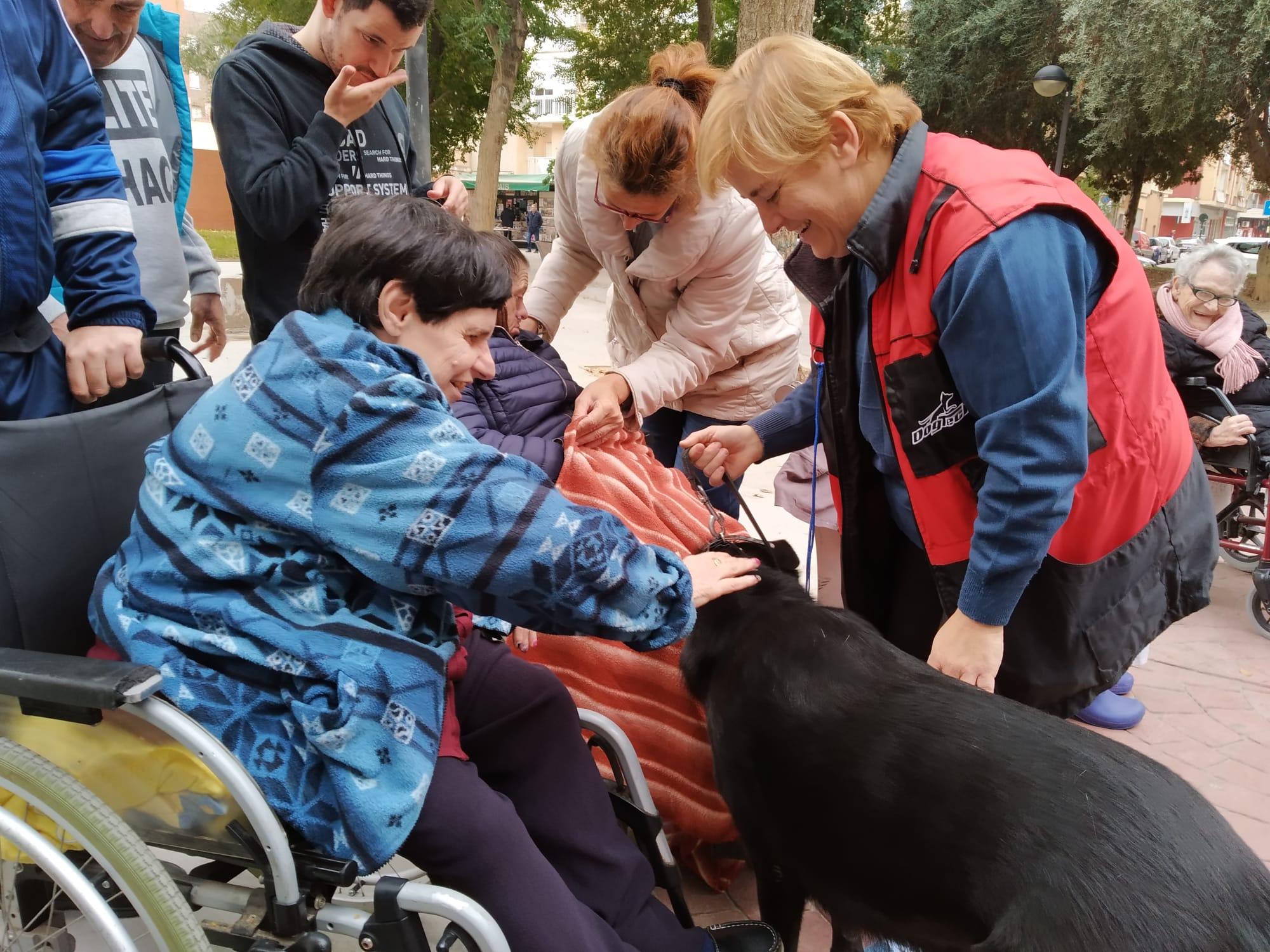 Vuelve Arwen: nueva jornada de terapia alternativa en el Centro de Día de Fundación AFIM