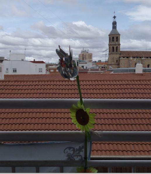 Paisajes desde mi ventana: exposición de Fundación AFIM Valdepeñas